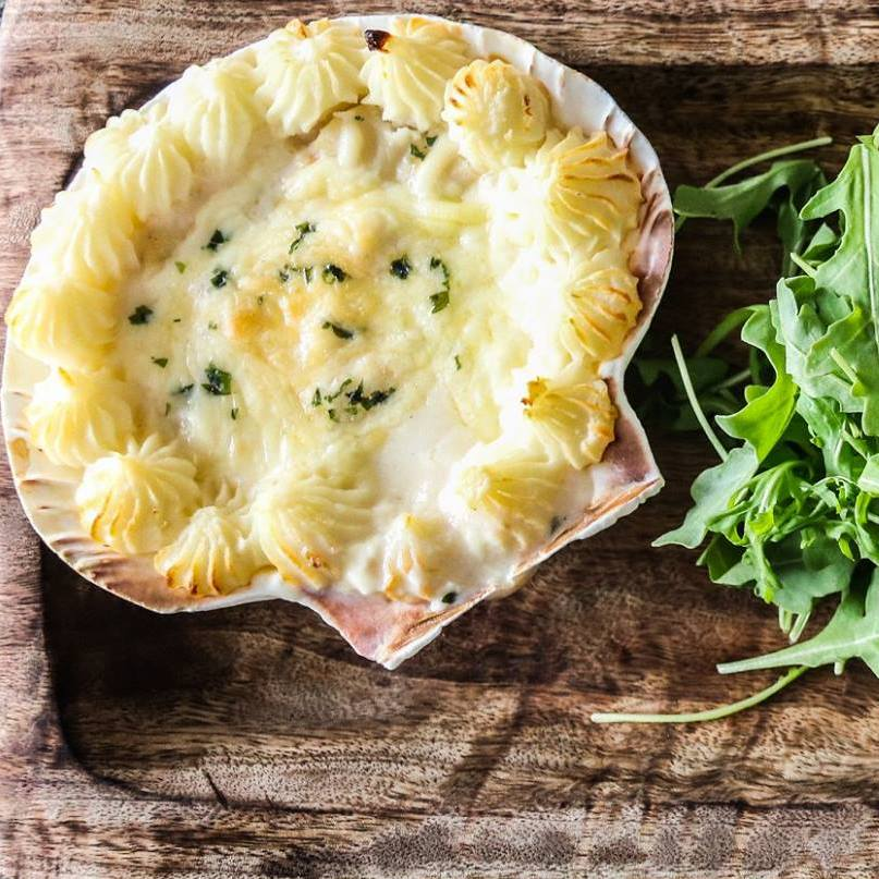 CoquillesSt-Jacques